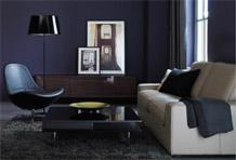 高贵优雅风沙发区搭配