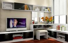 集收纳与美观为一体 16个小户型电视背景墙